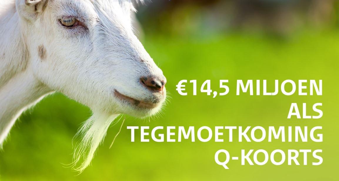 Getroffenen Q-koorts ontvangen € 15.000 tegemoetkoming